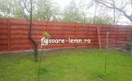 Garduri din lemn Sibiu 03