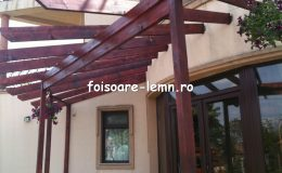 Pergola lemn intrare casa 11